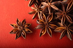 Aniseed. Spice ingredient  Aniseed in red background Royalty Free Stock Images