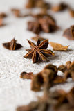 Aniseed Royalty Free Stock Photography