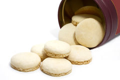 Aniseed christmas cookies Stock Images