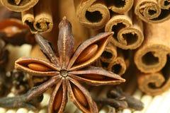 Aniseed and cinnamon. Closeup of Christmas spices - anise star, cloves and cinnamon sticks Stock Photos