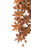 Anisetree anise. Whole Star Anise isolated on white background with shadow Royalty Free Stock Photography