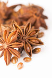 Anisetree anise. Whole Star Anise isolated on white background with shadow Stock Photography