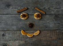 Anismandarin och kanelbruna pinnar på träbakgrund Royaltyfri Foto