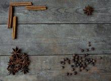 Anispeppar och kanelbruna pinnar på träbakgrund Royaltyfria Bilder