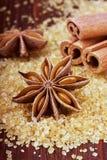 Anisstjärna och kanelbruna pinnar på brunt rottingsocker Royaltyfria Bilder