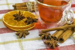 Anisstjärnor, kanelbruna pinnar för cassia, torkade orange cirklar och frui Royaltyfria Bilder