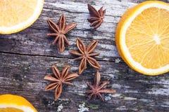 Anisum Pimpinella γλυκάνισου αστεριών Στοκ εικόνες με δικαίωμα ελεύθερης χρήσης