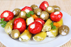 Anitpasto. Mixed antipasto on a plate Stock Photography