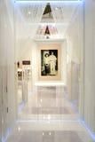Aniversário do aniversário da rainha da exposição H.M. 80th Fotografia de Stock Royalty Free