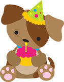 Aniversário do filhote de cachorro Imagem de Stock