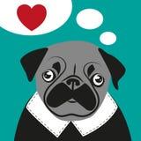 Aniversário engraçado dos Valentim do moderno do cartão do amor do Pug Imagem de Stock