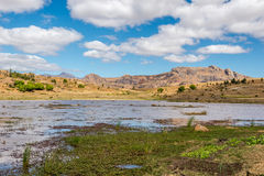 Anja - επιφύλαξη φύσης της Μαδαγασκάρης Στοκ Εικόνα