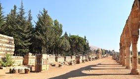 Anjar Libanon Arkivfoton
