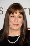Anjelica Huston Royalty Free Stock Photography