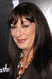 Anjelica Huston Royalty Free Stock Image