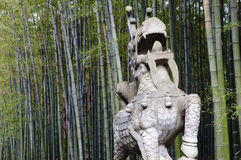 Free Anji Bamboo Forest - Hangzhou - China Royalty Free Stock Images - 90446619