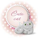 Anjo bonito do gato Fotografia de Stock