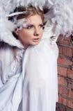 Anjo congelado Imagem de Stock Royalty Free