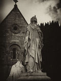 Anjo da estrela de Glasnevin Foto de Stock Royalty Free