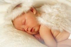 Anjo do bebê foto de stock royalty free