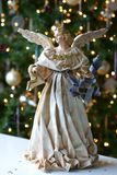 Anjo do Xmas do Natal da árvore Imagens de Stock