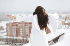 Anjo no telhado Imagens de Stock