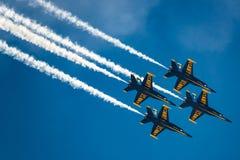 Anjos azuis na formação Fotografia de Stock