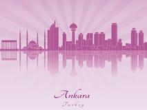 Ankara linia horyzontu w purpurowej opromienionej orchidei Zdjęcie Royalty Free