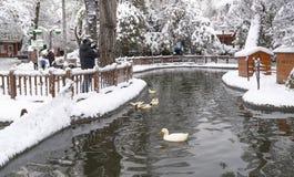 Ankara/Turkey-December 26 2018: Kugulu Park is a popular place to enjoy the day. Kugulu park under snow in winter royalty free stock photos
