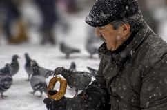 Ankara/Turkey-December 06 2018: Man feeding pigeon on his hand with simit which is Turkish bagel royalty free stock image