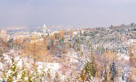 Ankara/Turkey-December 30 2018 -Ankara view with Sheraton Hotel through botanical garden in winter time royalty free stock photography