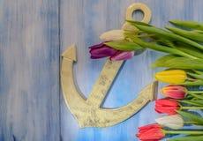 Anker und Tulpen Lizenzfreie Stockfotos