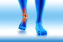 Ankle pain - hurt trauma. 3D image ankle pain - hurt trauma on a blue background Stock Photography