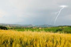 Ankommender Regen des Regens ankommend über Kornfeld Stockfoto