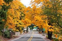 ankommer hösten Arkivfoton