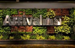Ankomsttecken och blommor på den Singapore Changi flygplatsen Royaltyfria Foton