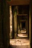 Ankor la città persa Fotografia Stock Libera da Diritti