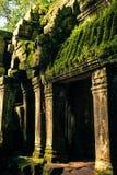 Ankor la città persa Fotografia Stock