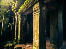 Ankor la ciudad perdida Foto de archivo