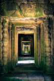 Ankor the lost city Royalty Free Stock Photos