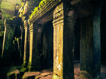 Ankor the lost city Stock Photo