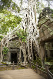 Ankor Wat, Камбоджа Стоковое фото RF