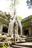 Ankor Wat, Камбоджа Стоковая Фотография