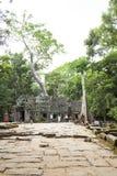 Ankor Wat, Камбоджа Стоковое Фото