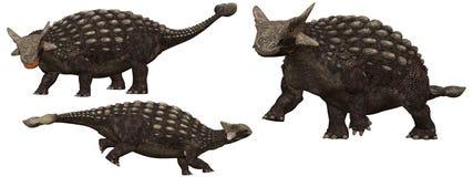 Ankylosaurus royalty free illustration