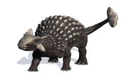 Ankylosaurus Imágenes de archivo libres de regalías