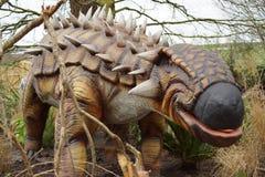 Ankylosaurus Zdjęcia Royalty Free