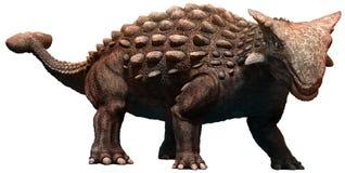 Ankylosaurus Fotografering för Bildbyråer