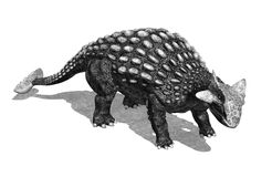 Ankylosaurus Dinosaur in Pencil Drawing Style Royalty Free Stock Images