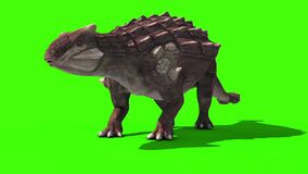 Ankylosaurus Dinosaurs Die 3D Animation Green Screen Jurassic Park